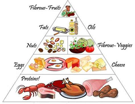 Pyramid Gut 1 free food pyramid image search results