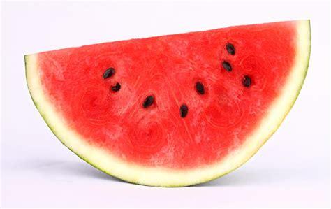 Water Melon how much water is in a watermelon wonderopolis