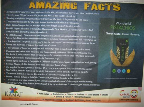 8 Facts On by Amazing Facts