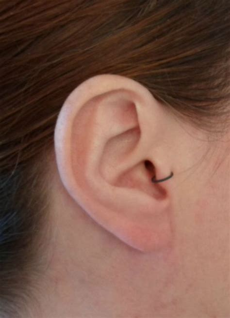 Ear Piercing Sleepers by 25 Best Ideas About Helix Ring On Helix