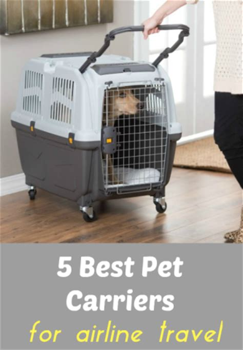 best air airlines 5 best pet carriers and tips for safer airline cargo