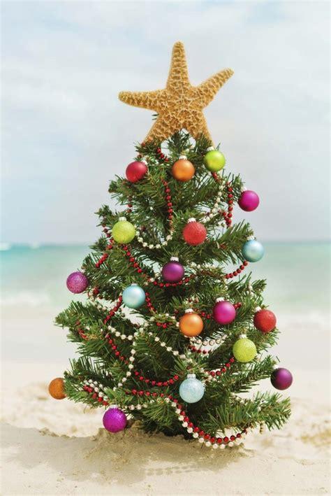 Christmas Tree On Beach   Christmas Lights Decoration