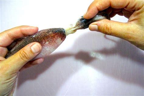 come cucinare il totano come cucinare i calamari dissapore