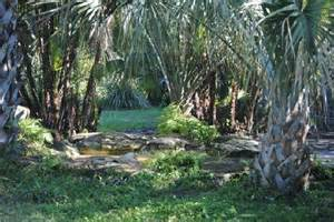 panther habitat picture of flamingo gardens davie