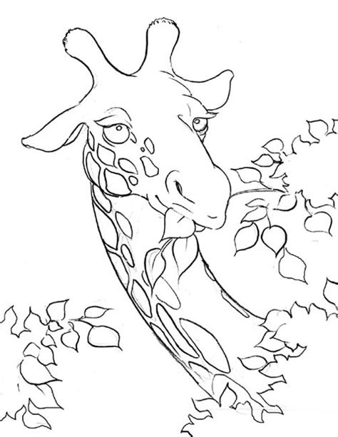 coloring page of giraffe giraffe coloring pages 2 coloring pages to print