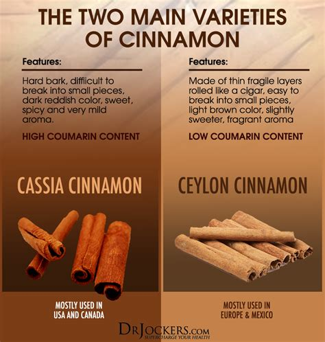 the best cinnamon what is the best type of cinnamon to use drjockers