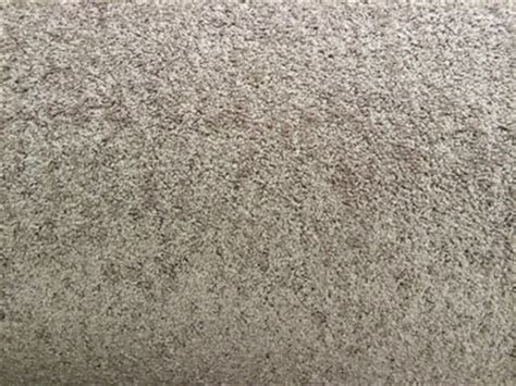 builders grade builders grade carpet carpet ideas