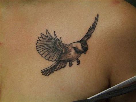 chickadee tattoo designs chickadee by amanda wachob