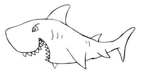 printable pictures great white sharks great white shark clipart printable pencil and in color