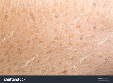 up human skin macro epidermis stock photo image 36429598 human skin background macro stock photo 165587033