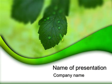 nature powerpoint templates free green nature powerpoint template for impressive
