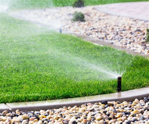 backyard sprinkler system six types of grass for florida lawns