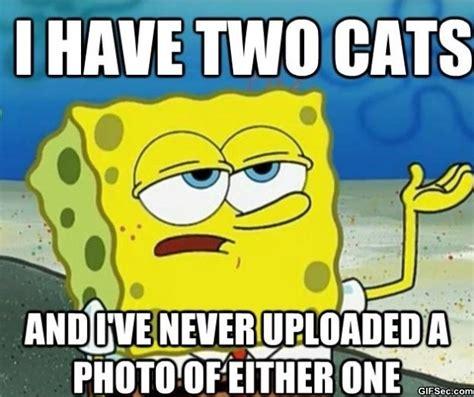 Spongebob Memes Funny - spongebob meme