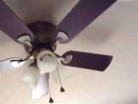 Ceiling Fan Socks by Mario Sock Falls The Ceiling Fan