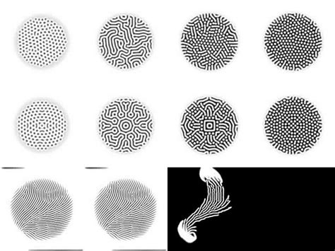 pattern formation parametric 179 best images about computational design on pinterest