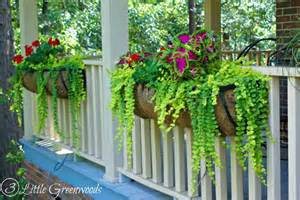 Fall Flowers For Window Boxes - hanging flower basket tips tricks and inspirations