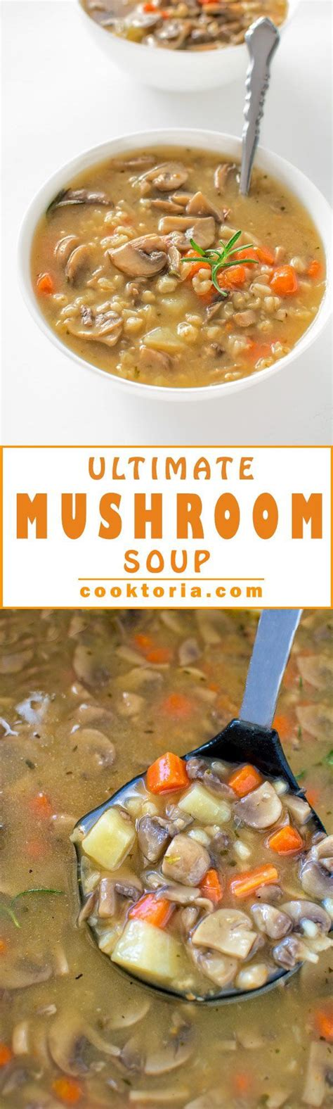 low calorie vegetarian soup recipes hearty and comforting healthy and low calorie this