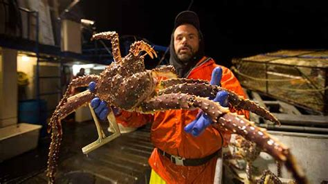 the hunt for snow crabs deadliest catch discovery emmy for unstructured reality program will deadliest