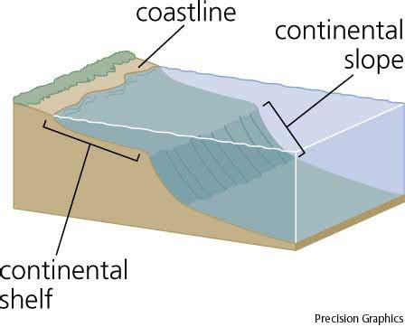 Continential Shelf by Continental Shelf Dictionary Definition Continental