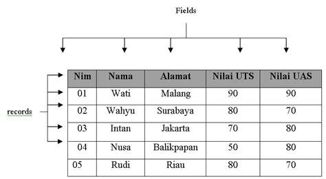 table layout adalah pengertian table dalam microsoft access trie poutry