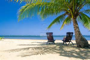 Two people relax in chairs under the shade of tropical palm tree