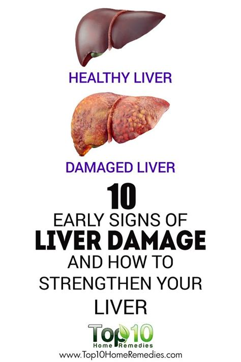 Detox For Liver Cancer by 10 Early Signs Of Liver Damage How To Strengthen Your
