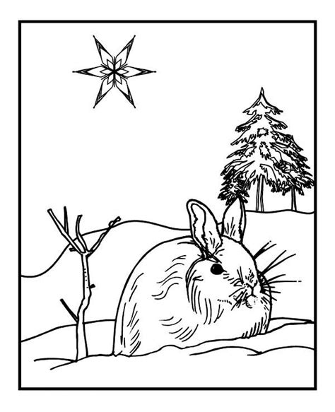 winter rabbit coloring page winter rabbit coloring page kids coloring page gallery