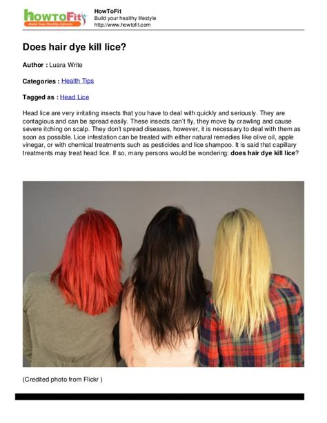 Hair Dryer Lice Kill does hair dye kill lice