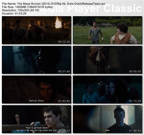 download film maze runner cinemaindo download the maze runner 2014 dvdrip nl subs