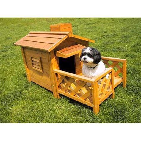 little dog houses dog houses dog houses pinterest