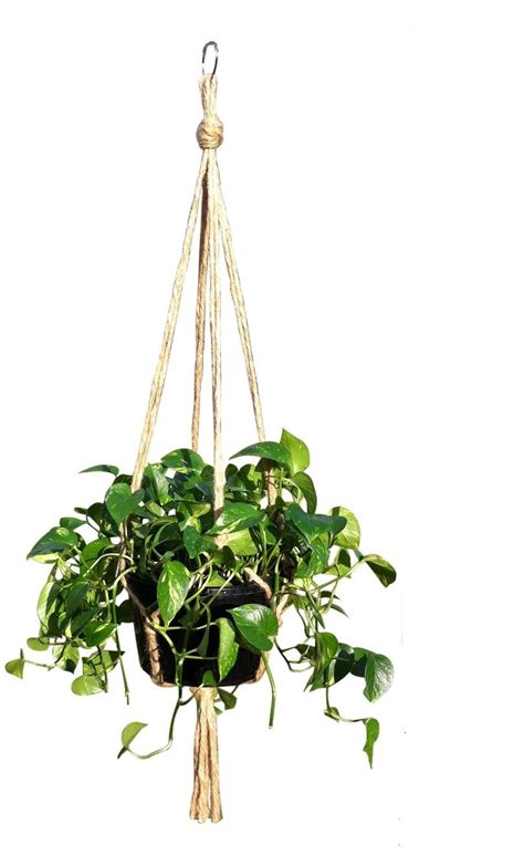 Rope For Hanging Plants - hanging basket plant hanger holders large for indoor and