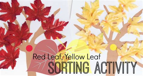 red leaf yellow leaf 0152661972 red leaf yellow leaf sorting activity pre k pages