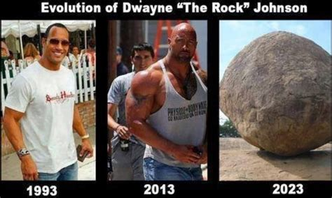 The Rock Memes - do hollywood actors take steroids irongangsta the