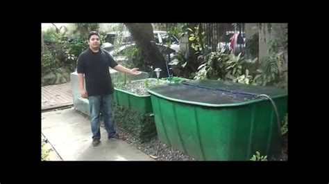 aquaponics philippines  cascade system