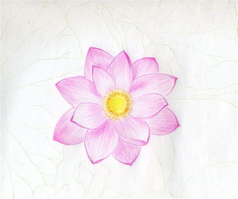 wallpaper flower draw flowers background flower wallpaper images of flower
