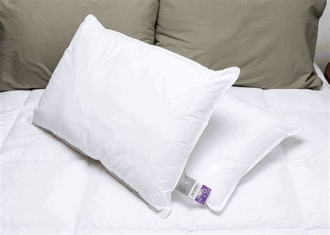 National Sleep Products Pillows restful s national sleep products 174 conformance