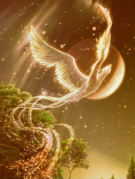 glow in the dark tattoo phoenix 隐形的翅膀 搜狗百科