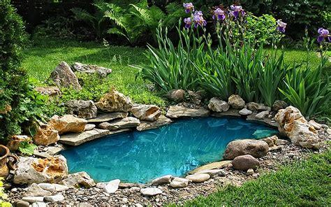 piccolo laghetto in giardino askoll il laghetto in giardino un sogno si realizza
