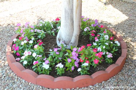 Planter Trees by Adding Curb Appeal On A Budget Diy Tree Ring Flower Planter