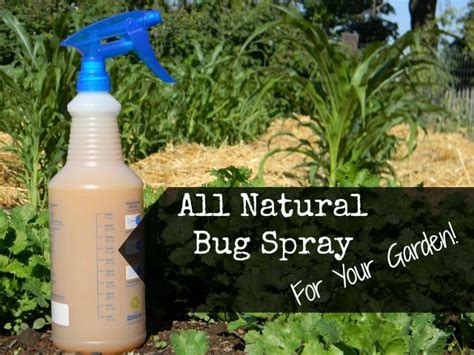 Sprei Home Made 28 insect spray for plants 28 images bug spray