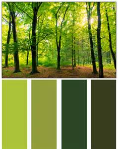 forest colors palette by nature