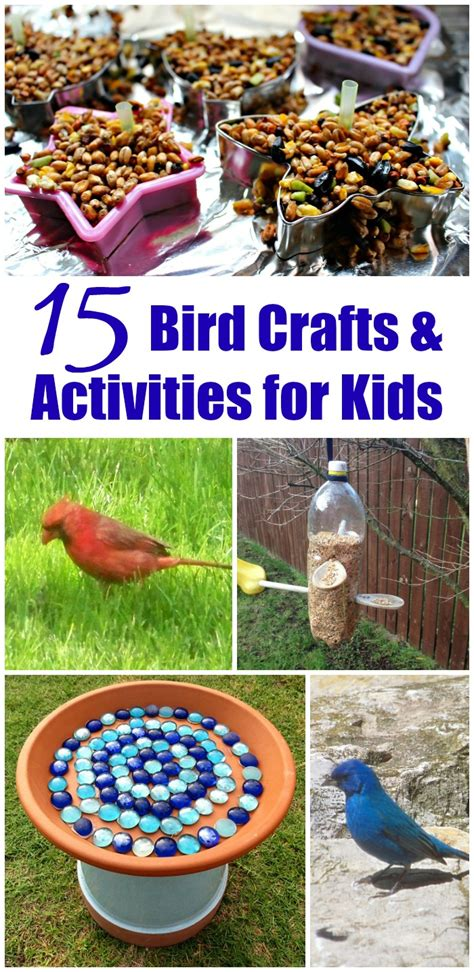 backyard kid activities 15 outdoor activities backyard birds for kids