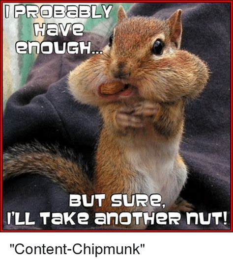 Chipmunk Meme - have enough but sure i ll take another nut content