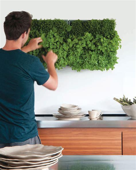 Pflanzen An Der Wand Selber Machen by Gr 252 Ne Wand Raffinierter Blickfang F 252 R Die Wohnung Bauen De