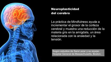 Atencion Imagenes Mentales Y Conciencia | mindfulness el l 237 der atento el nuevo modelo de 233 xito