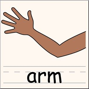 arm clipart arm clipart free best arm clipart on clipartmag