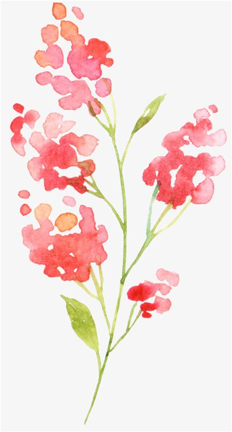 painted flowers flower gules png image and clipart for