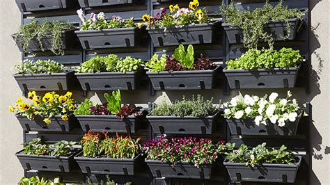Bunnings Vertical Garden How To Build A Vertical Garden Bunnings Warehouse