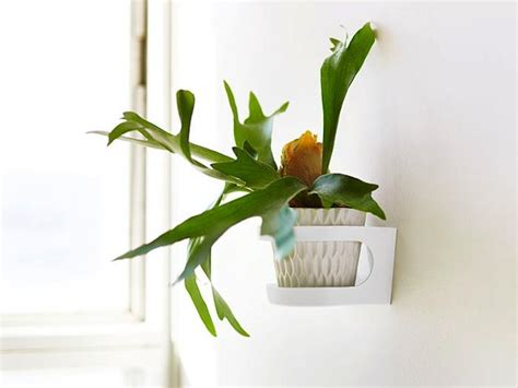 wall mounted plant holder space saving stepladder plant stands gardenista