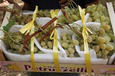 uva da tavola pugliese uva da tavola al via la raccolta in puglia agronotizie